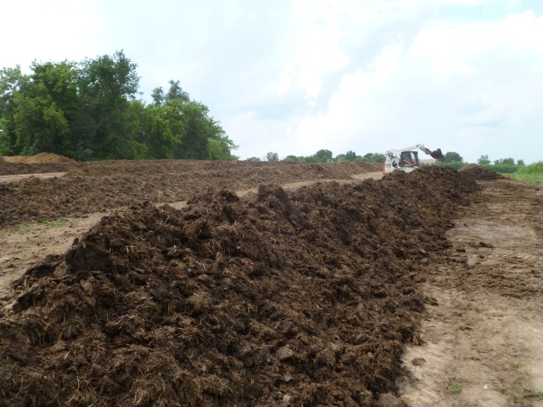 These piles are each about 150 ft long. We now have 6 of them. Andrew Stewart is operating the Bobcat loader. Andrew is our compost builder and manager
