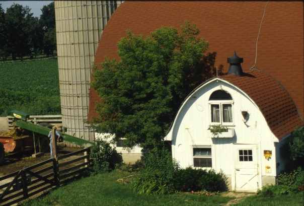 Here's our milkhouse 30 years ago. Notice the box elder tree to the left of the milkhouse