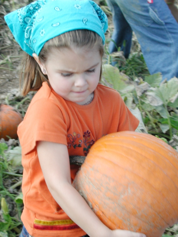 Pick any size pumpkin in our Pumpkin Patch
