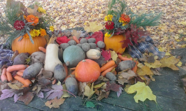 Squash, carrots, beets, potatoes, and leaves from the maple tree that I gave my mom 40 years ago. (It was just a little stick with roots on it.)