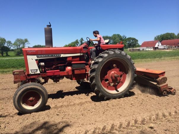 Andrew Stewart seeds sudan grass, timothy, alfalfa, clover and tillage turnips for soil fertility