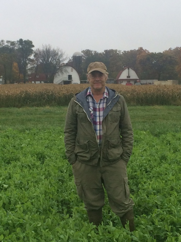 Farmer Johns stands in a lovely crop of fall peas that add nitrogen to the soil, stimulate microbial activity, and minimize erosion. Multi-year cover crop is in the background
