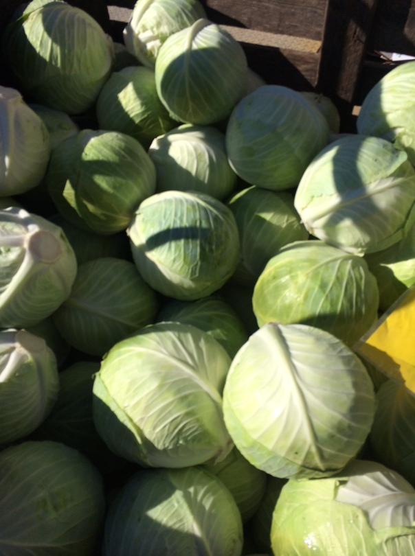 We still have cabbage in the fields. It will be sweeter after this past weekend's frost